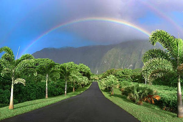 SD / rainbow-drive