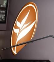 TIM School/Bird of Paradise logo