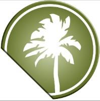 TIM School/Palm tree logo
