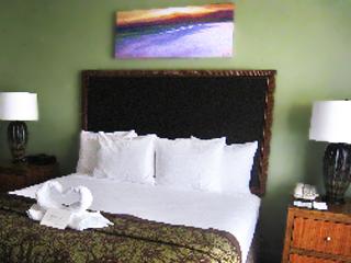 Hilton Waikoloa Time Share image 1 copy