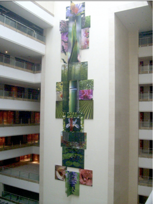 TC-Garden Hotel, Xyiing, China 84ft. x 17ft.